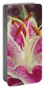 Pink Daylily Portable Battery Charger