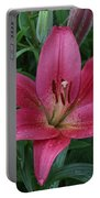 Pink Lilly Portable Battery Charger