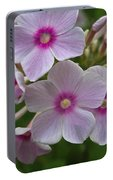 Pink Wood-sorrel  Portable Battery Charger