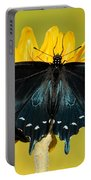 Pipevine Swallowtail Butterfly Portable Battery Charger
