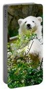 Polar Bear Cub  Portable Battery Charger