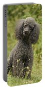 Poodle Dog Portable Battery Charger