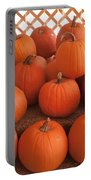 Pumpkins On Pumpkin Patch Portable Battery Charger