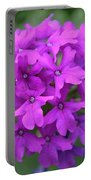 Purely Purple Portable Battery Charger