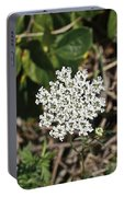 Queen Anne's Lace Portable Battery Charger