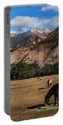 Rancho Oso - California Portable Battery Charger