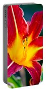 Red And Yellow Lily Portable Battery Charger