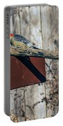 Red-bellied Woodpecker Feeding Portable Battery Charger