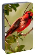 Red Cardinal Portable Battery Charger