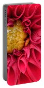 Red Dahlia Portable Battery Charger