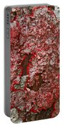 Red Lichen  Portable Battery Charger