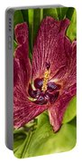 Red Tropical Tree Flower Portable Battery Charger