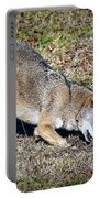 Red Wolf Portable Battery Charger
