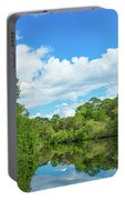 Reflection Of Trees And Clouds In South Portable Battery Charger