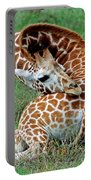 Reticulated Giraffe Resting Portable Battery Charger