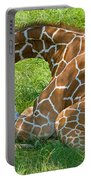 Reticulated Giraffe Sleeping Portable Battery Charger