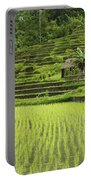 Rice Fields In Bali Indonesia Portable Battery Charger