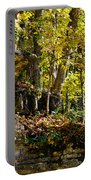 Rock Shelf And Forest Portable Battery Charger
