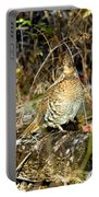 Ruffed Grouse On Drumming Log Portable Battery Charger