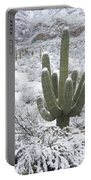 Saguaro Cactus After Rare Desert Portable Battery Charger