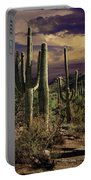 Saguaro Cactuses In Saguaro National Park Portable Battery Charger