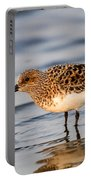 Sanderling Portable Battery Charger