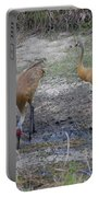 Sandhill Stork Portable Battery Charger
