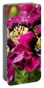 Schizanthus From The Hit Parade Mix Portable Battery Charger