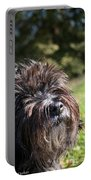 Scruffy Portable Battery Charger