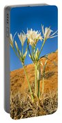 Sea Daffodil Portable Battery Charger
