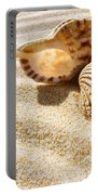 Seashell And Conch Portable Battery Charger by Carlos Caetano