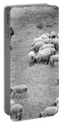 Shepherd With Sheep  Portable Battery Charger