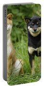 Shiba Inu Dogs Portable Battery Charger