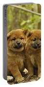 Shiba Inu Puppies Portable Battery Charger
