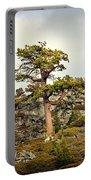 Sierra Landscape Portable Battery Charger