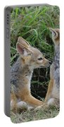 Silver-backed Jackal Pups Portable Battery Charger