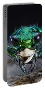 Six-spotted Green Tiger Beetle Portable Battery Charger