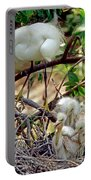 Snowy Egrets Portable Battery Charger