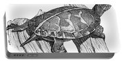 Southern Painted Turtle Portable Battery Charger
