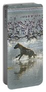 Spotted Hyaena Hunting For Food Portable Battery Charger