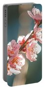 Spring Peach Tree Blossom Portable Battery Charger