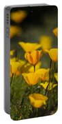 Springtime Poppies  Portable Battery Charger