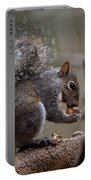 Squirrel II Portable Battery Charger
