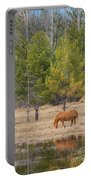 Still Waters Portable Battery Charger