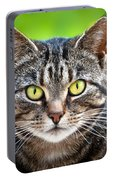 Stray Cat Stare Portable Battery Charger