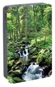 Stream Flowing Through A Forest, Usa Portable Battery Charger