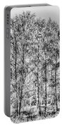 Summer Forest Trees Portable Battery Charger