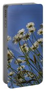 Sun Lit Daisies Portable Battery Charger
