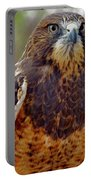 Swainson's Hawk Portable Battery Charger