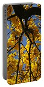 Tabebuia Tree Blossoms Portable Battery Charger